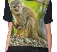 Common Squirrel Monkey Chiffon Top