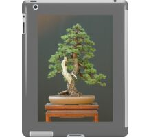 Evergreen Bonsai iPad Case/Skin