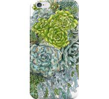 Succulent Obsession iPhone Case/Skin
