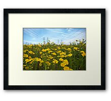 electric daisies Framed Print