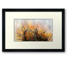Unknown Place   Framed Print