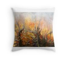 Unknown Place   Throw Pillow