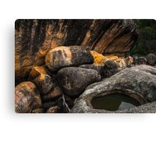 Girraween National Park Canvas Print