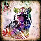 Painted Tiger by amira