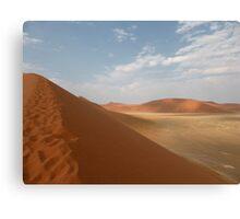 African desert Canvas Print