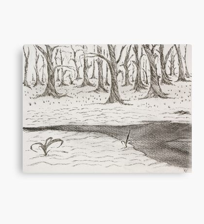 Cold winters day Canvas Print