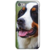 Bernese Mountain Dog Portrait iPhone Case/Skin