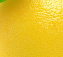 Fresh lemon Sticker
