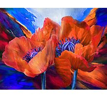 Red Poppies On Blue Photographic Print