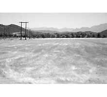 Grass - Robertson, South Africa Photographic Print