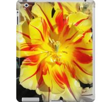 Ablaze iPad Case/Skin