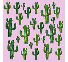 Pink Cactus Print Photographic Print