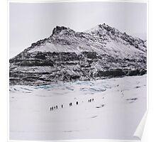 Glacier Walkers Poster