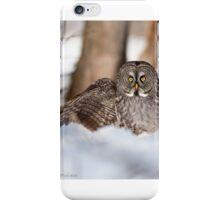 Studio Model or Studio Modowl? iPhone Case/Skin
