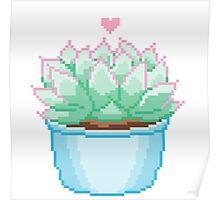 Pixel Cactus Poster