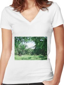 Green Grass Farmer Women's Fitted V-Neck T-Shirt