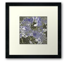 Look Up From The River Bed Framed Print