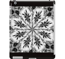 Frosty Snow Flake Kaleidoscope iPad Case/Skin