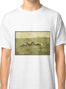 Vintage Baby Geese Classic T-Shirt