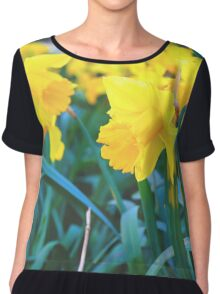 Spring Time Daffodils Chiffon Top