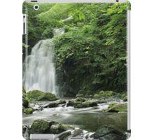 Gleno Waterfall iPad Case/Skin