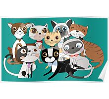 Cartoon Pets So Many Cats Cat Lover Poster