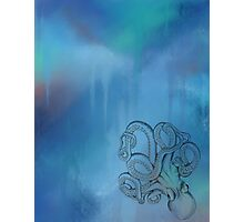 Octopus - Blue Background Photographic Print