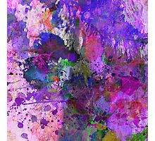 Lilac Chaos Photographic Print