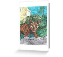 Tig in the Jungle  Greeting Card