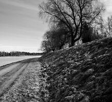 Ages by Matti Ollikainen