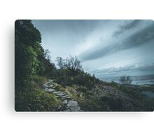 Wind Canvas Print