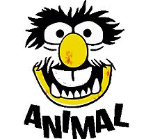 Animal Muppets Photographic Print