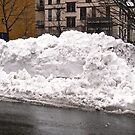 April Snow by Shulie1