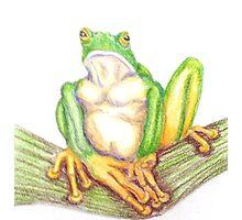 Grumpy Frog Pondering Photographic Print