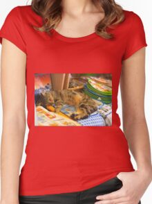 Cat in the Shop Women's Fitted Scoop T-Shirt