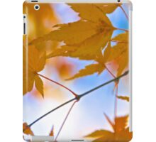 Complementary Colors iPad Case/Skin