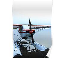 Bush Plane Poster