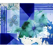 Flower Butterfly Abstract 2016 Photographic Print