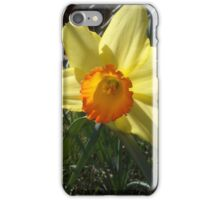 Wide Open Floral iPhone Case/Skin