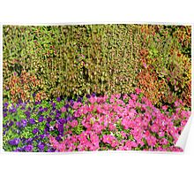 Natural background with many colorful plants. Poster