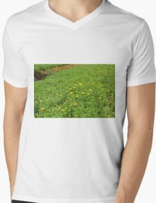 Green meadow with yellow flowers. T-Shirt