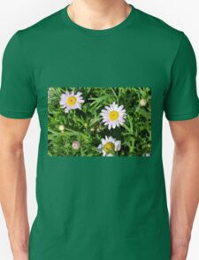 Pink beautiful flowers in the green grass. Unisex T-Shirt