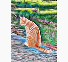 Orange cat sitting on a path in rural Queensland, Australia Unisex T-Shirt
