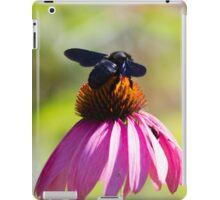 bee on echinacea in the garden iPad Case/Skin