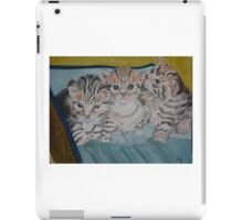 Kittens in a Box iPad Case/Skin