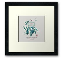Veg Love Collection No.6 Bean Framed Print