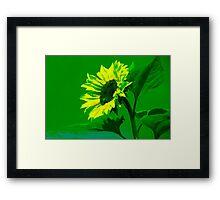 Burning Sunflower, Green. Framed Print