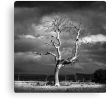 Ghostly Canvas Print