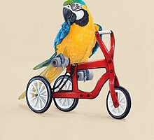 Parrot Macaw bike red by Ruta Dumalakaite
