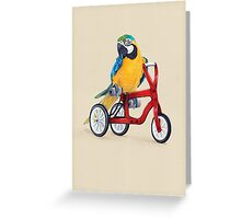 Parrot Macaw bike red Greeting Card